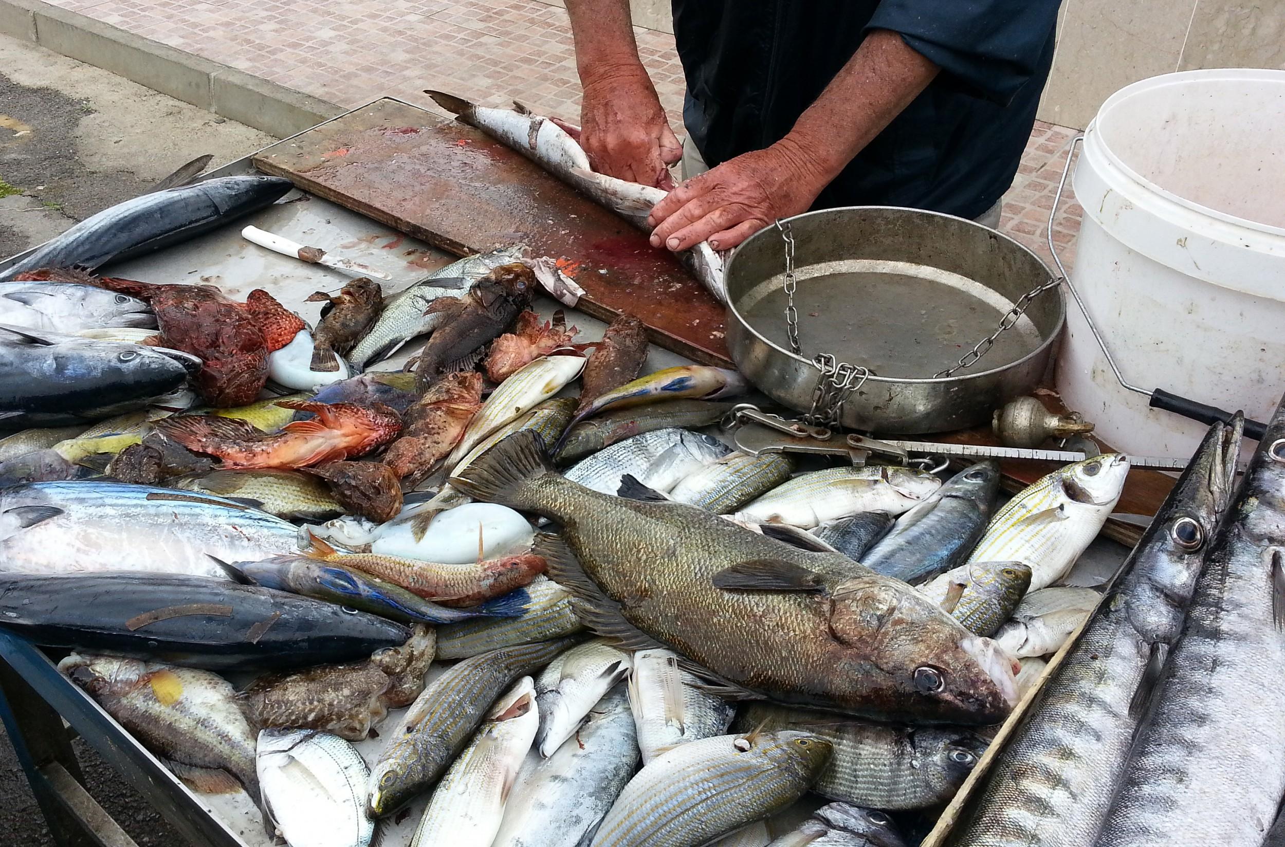 Sedie A Sdraio Palermo : Mondello il borgo marinaro e la spiaggia di palermo